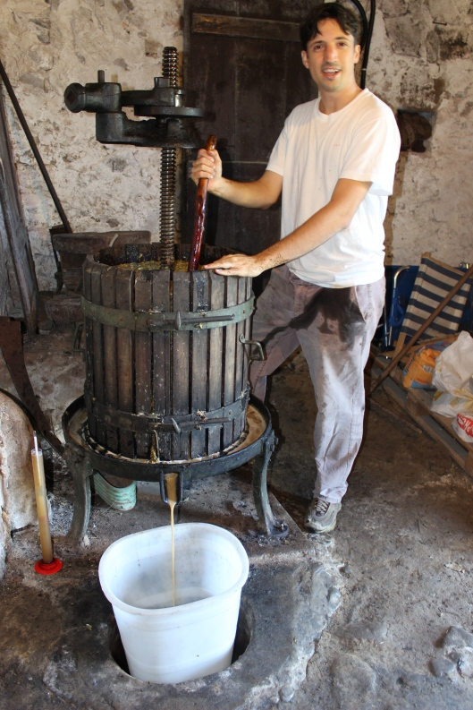 Mattia hand presses the white grapes to release the juice.